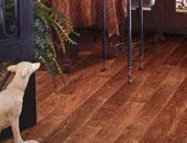 环保木地板十大品牌推荐 哪些品牌的地板环保