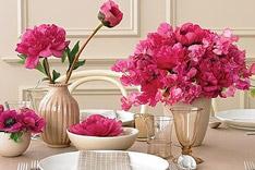 用鲜花装扮居室